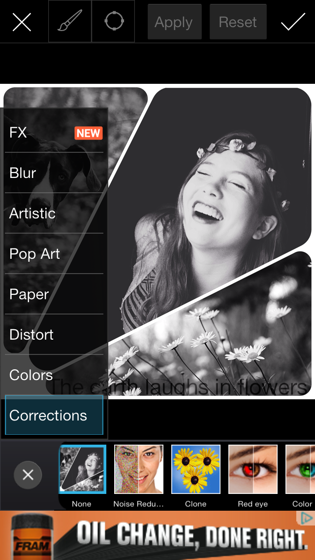 Six Free Apps for Creating Photo Collages | Chatbooks Blog